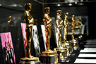 Meet The Oscars!